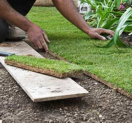 Florida Landscape Architect | Landscape Improvements