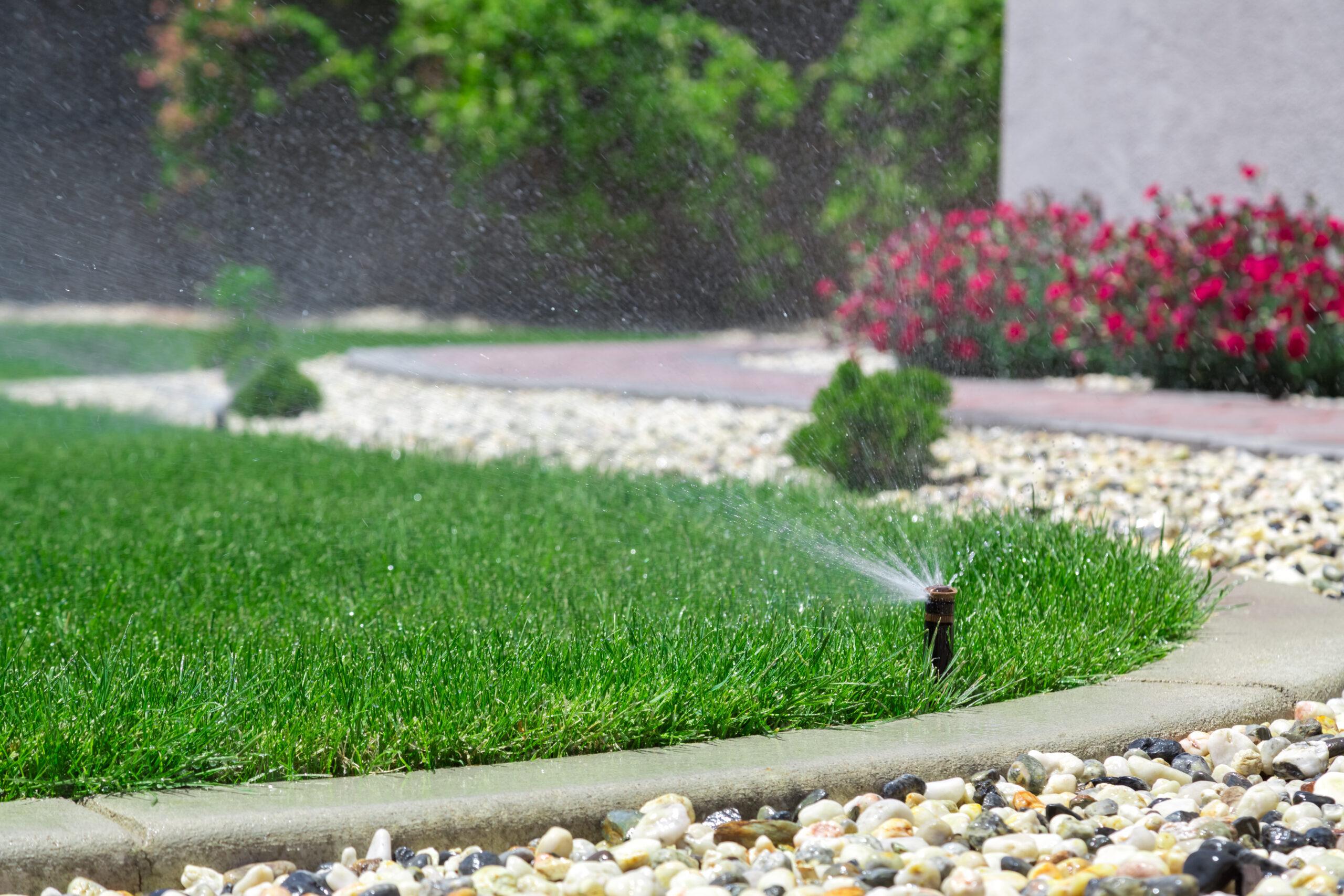 Lawn Sprinkler System   Landscape Improvements
