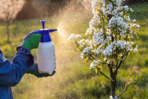 Integrated Pest Management   Organic Pest Control   Landscape Improvements