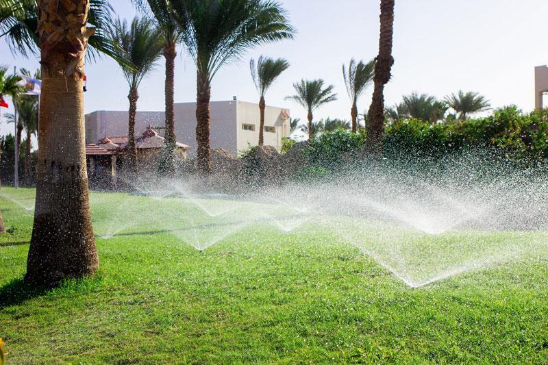 Full Irrigation System Resort Landscape