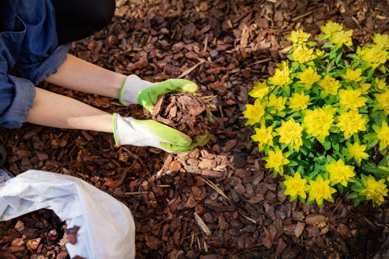 Black Mulch Landscaping | Landscape Improvements