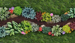 Horticulture Plants   Landscape Improvements