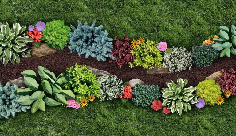 Horticulture Plants | Landscape Improvements