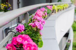 Landscape Garden   Growing Plants in Glass Containers   Landscape Improvements