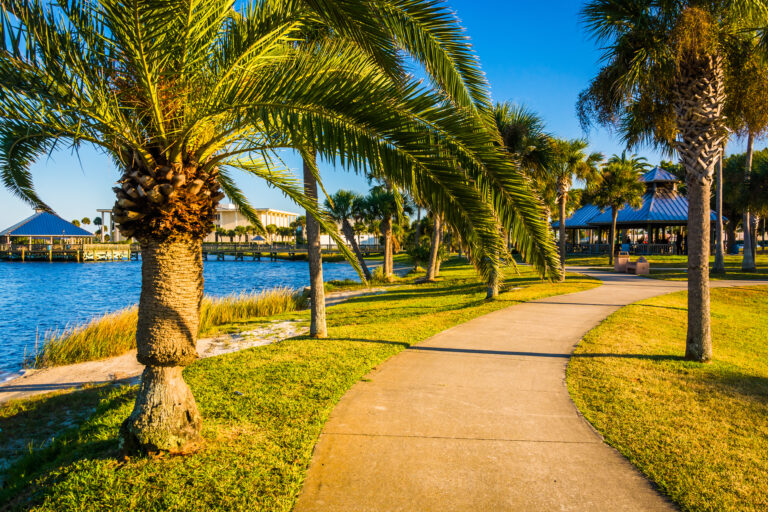 A Public Place With Palm Trees