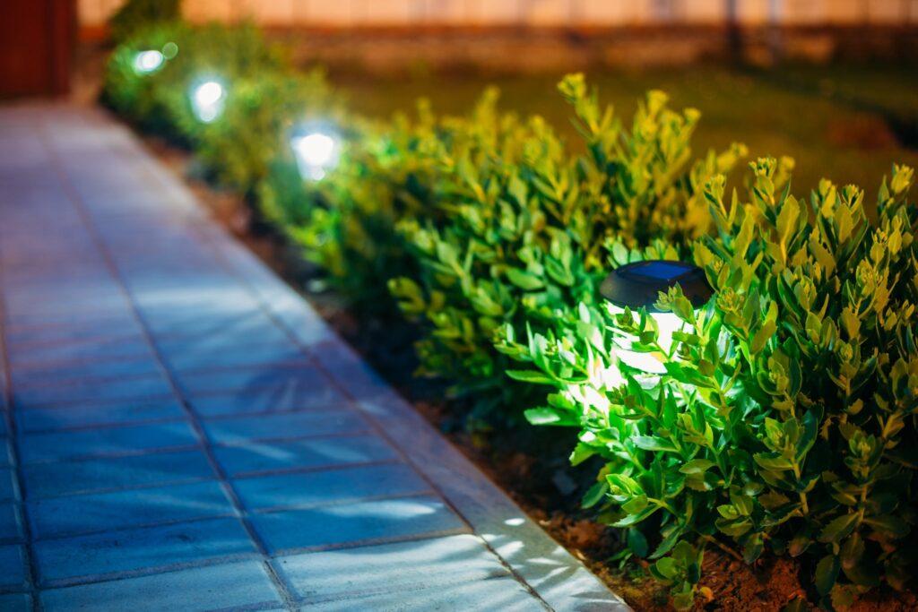 Beautiful Lighting Along Pavement | Landscape Improvements