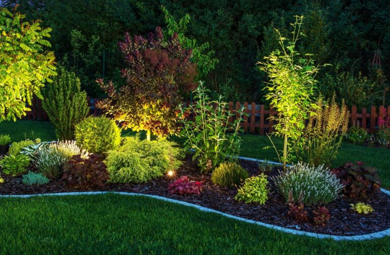 Tree Lighting | Landscape Improvements
