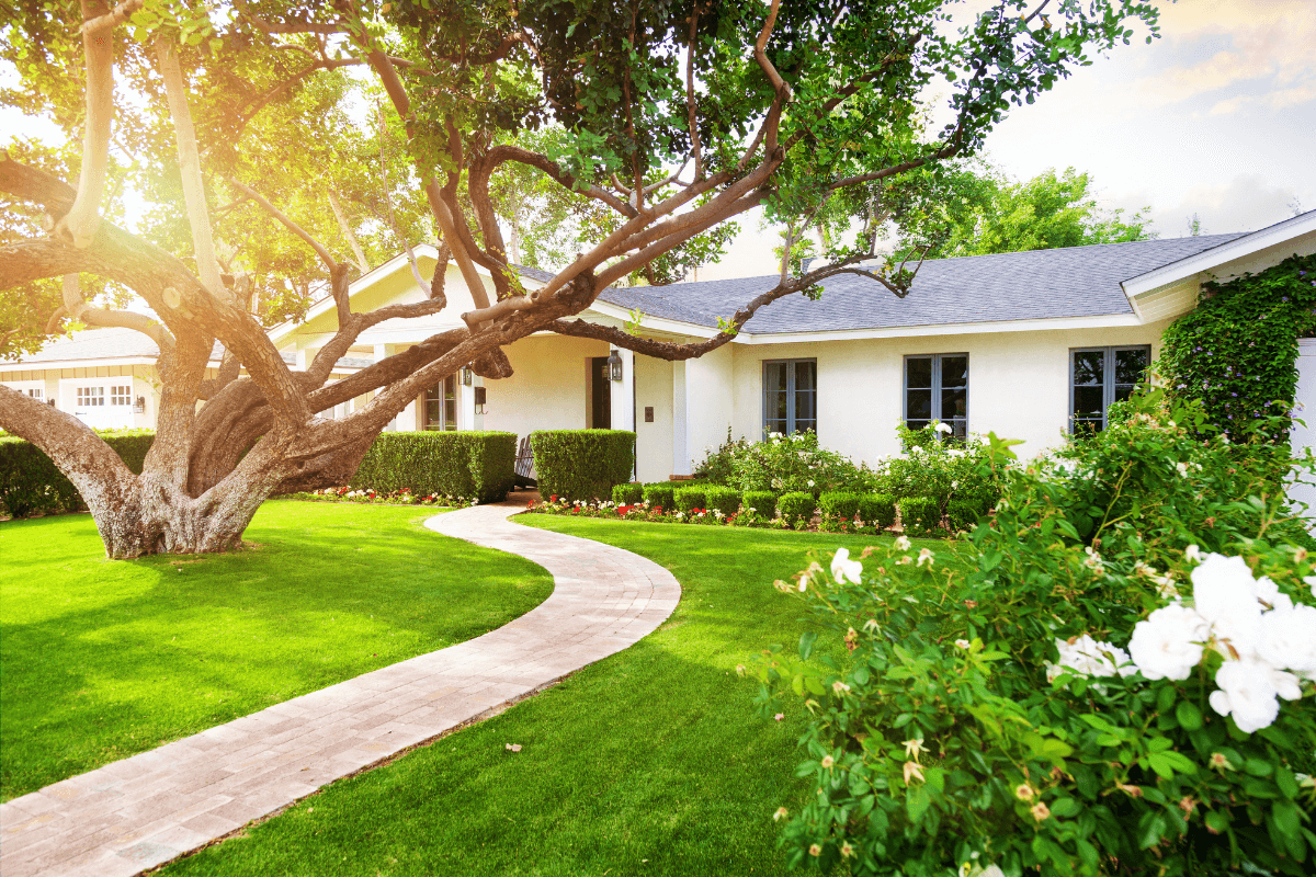 Customized to Your Liking | Landscape Improvements