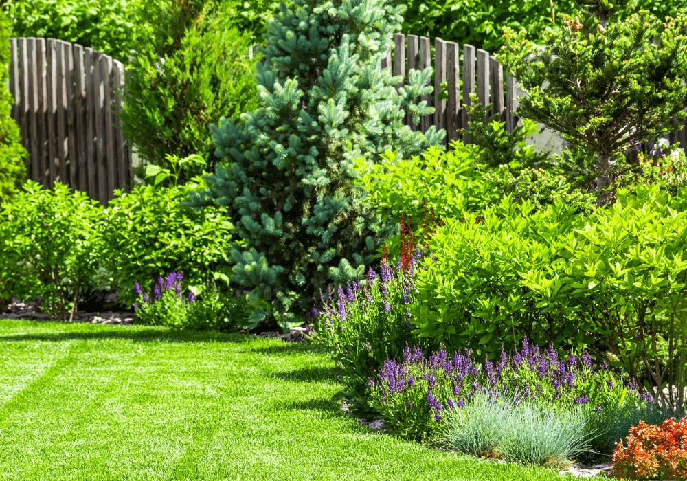 Lawn and Landscape | Landscape Improvements