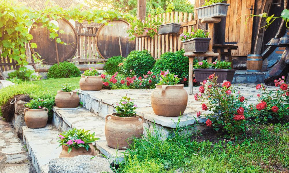Potted Plants | Landscape Improvements