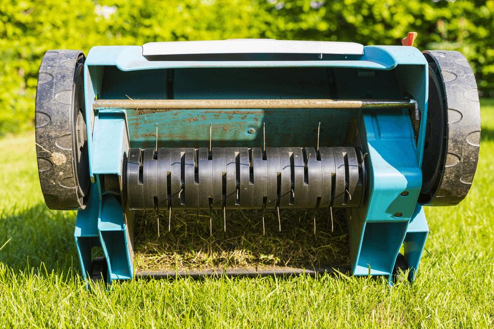 Spring Yard Cleanup | Landscape Improvements