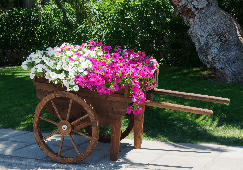 Recycle Old Wheelbarrow and Bicycle | Landscape Improvements