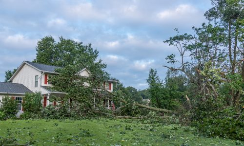 Outdoor Damage After Storm