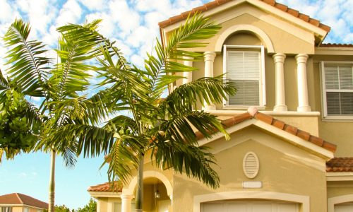 Residential Tropical Landscape